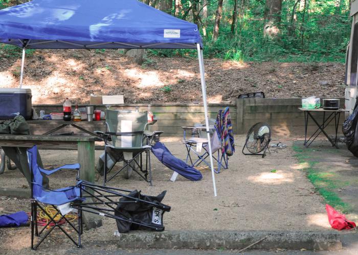 Campsite view.Upper Stamp Creek Campground, campsite 2