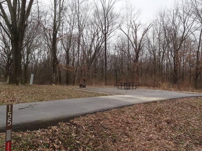 picnic table and fire pit to the left of camp pad, electric and water to the right of pad.