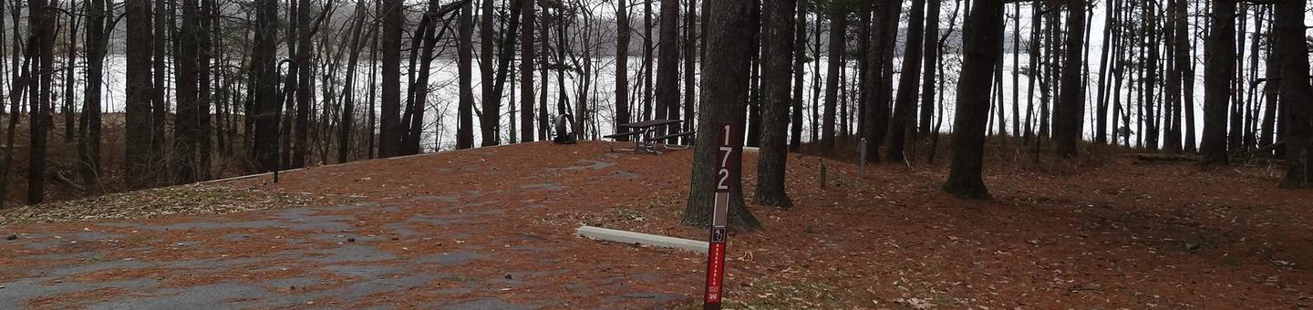 picnic table and fire pit to the left of camp pad, electric, water, sewer, and extra parking to the right of pad.