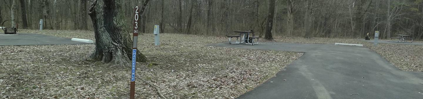 picnic table and fire pit to the left of camp pad, electric and extra parking to the right of pad.