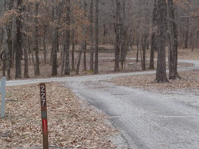 Pull through type site with picnic table and fire pit on the right of camp pad, electric on left of camp pad