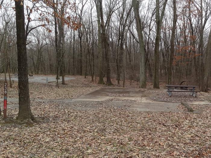 picnic table and fire pit to the left of camp pad, electric to the right of pad.