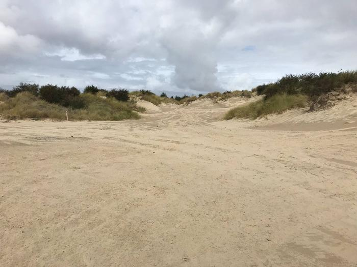 Siltcoos Sand Camp Site 16