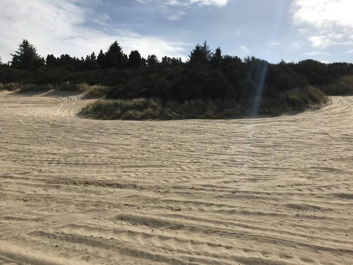 Siltcoos Sand Camp Site24Siltcoos Sand Camp Site 24