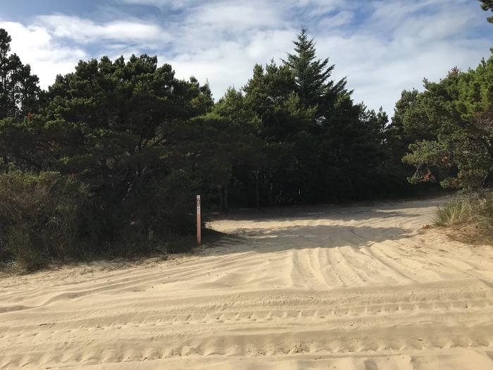 Siltcoos Sand Camp Site 25Siltcoos Sand Camp Site25