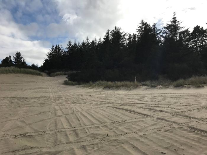 Siltcoos Sand Camp Site 27