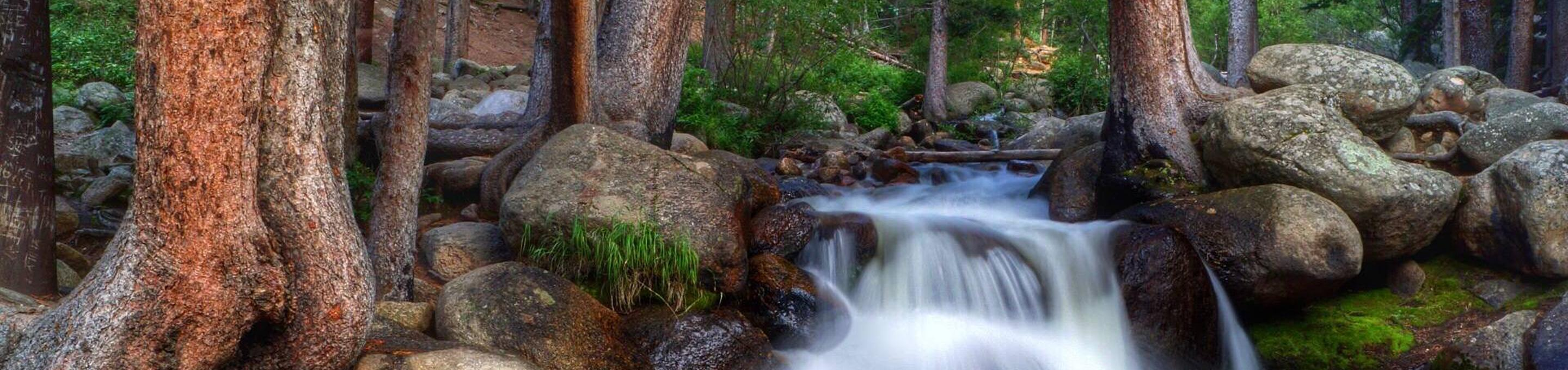 A creek flowing in the Arapaho National Forest