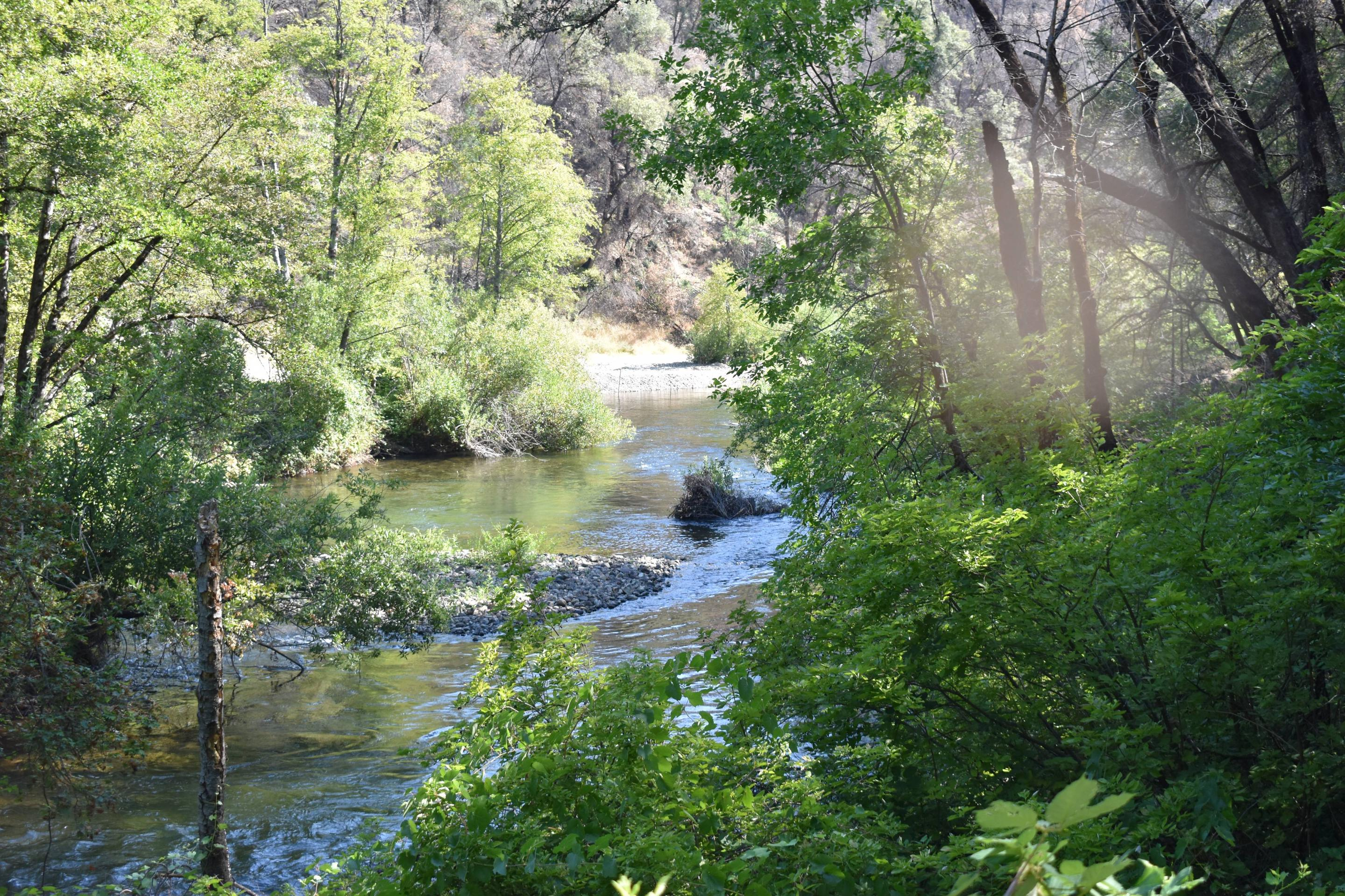 Clear Creek at Peltier Bridge Campground 2