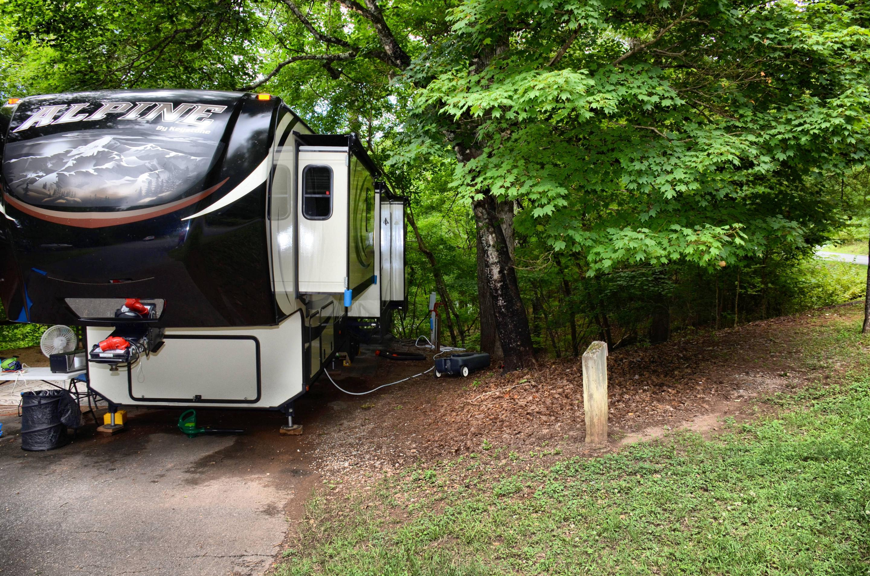 Utilities-side clearance.McKinney Campground, campsite 81.