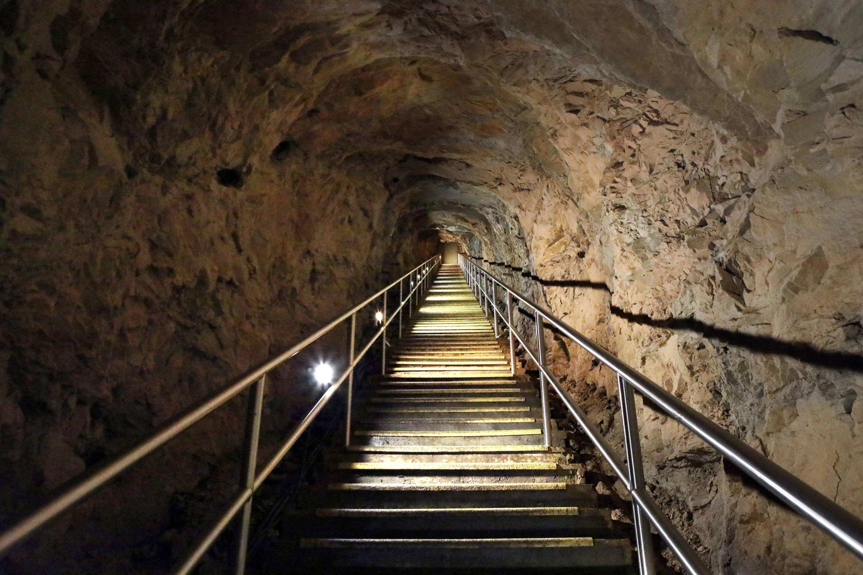Steps at the Carmichael Entrance
