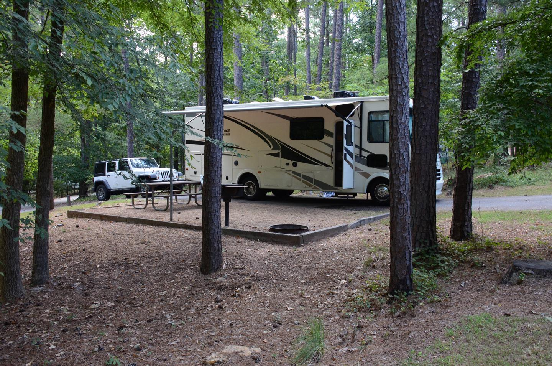 Campsite view.McKinney Campground, campsite 12.
