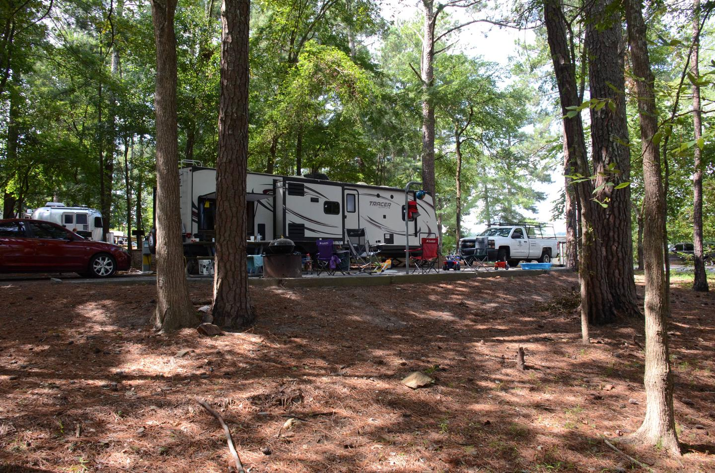 Campsite view, awning-side clearanceMcKinney Campground, campsite 31.