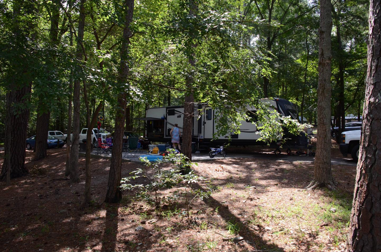 Campsite view.McKinney Campground, campsite 31.