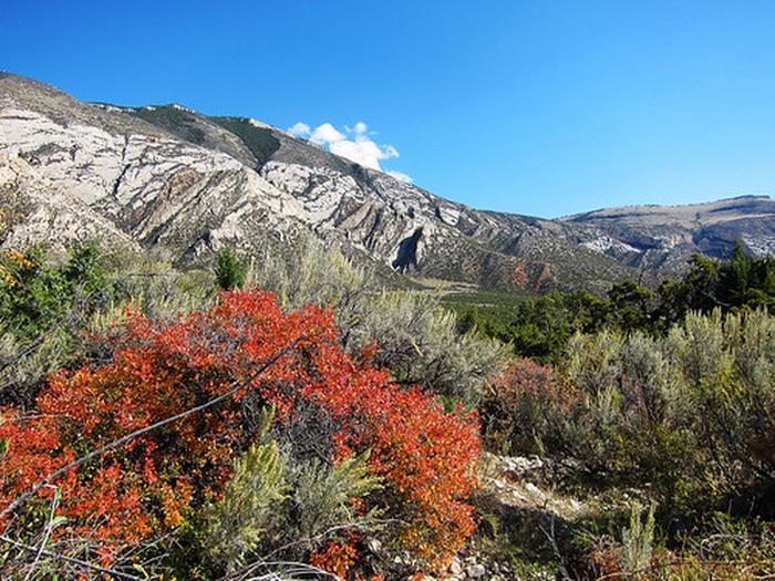 Cottonwood Creek Mountains photo