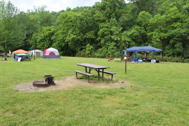 Steel Creek camp Site #1 (photo 9)Steel Creek Camp Site #1
