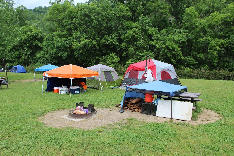 Steel Creek Camp Site #5 (photo 1)Steel Creek Camp Site #5
