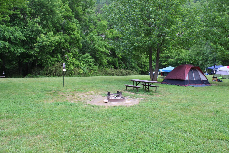Steel Creek Camp Site #7 (photo 1)Steel Creek Camp Site #7