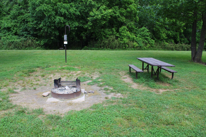 Steel Creek Camp Site #7 (photo 2)Steel Creek Camp Site #7