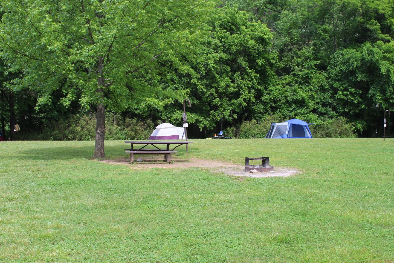 Steel Creek Camp Site #11 (photo 1)Steel Creek Camp Site #11