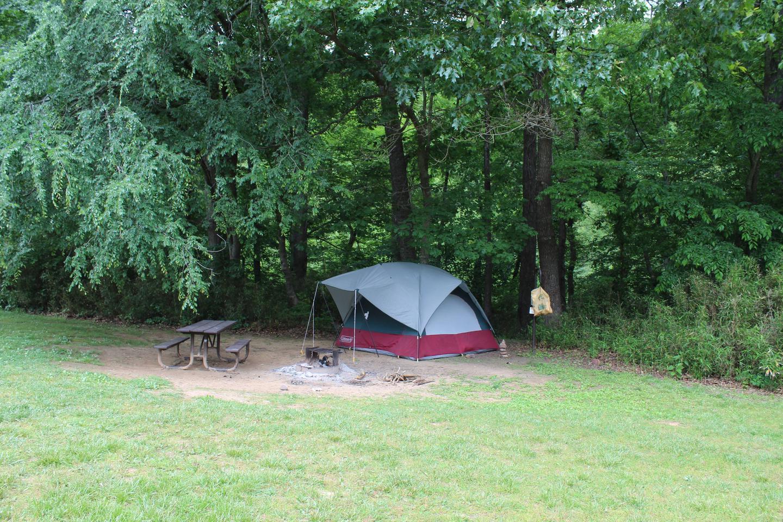 Steel Creek Camp Site #12 (photo 1)Steel Creek Camp Site #12