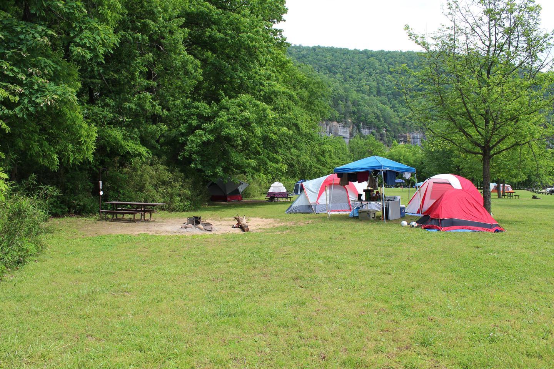 Steel Creek Camp Site #14 (photo 1)Steel Creek Camp Site #14