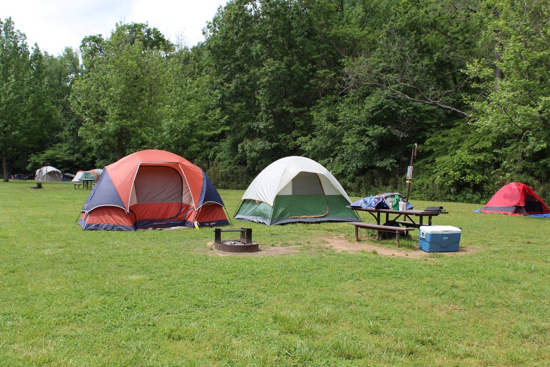 Steel Creek Camp Site #15 (photo 1)Steel Creek Camp Site #15