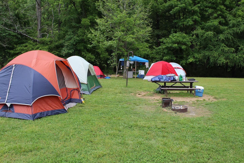 Steel Creek Camp Site #15 (photo 2)Steel Creek Camp Site #15