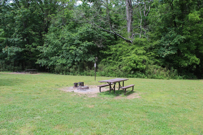 Steel Creek Camp Site #16 (photo 2)Steel Creek Camp Site #16