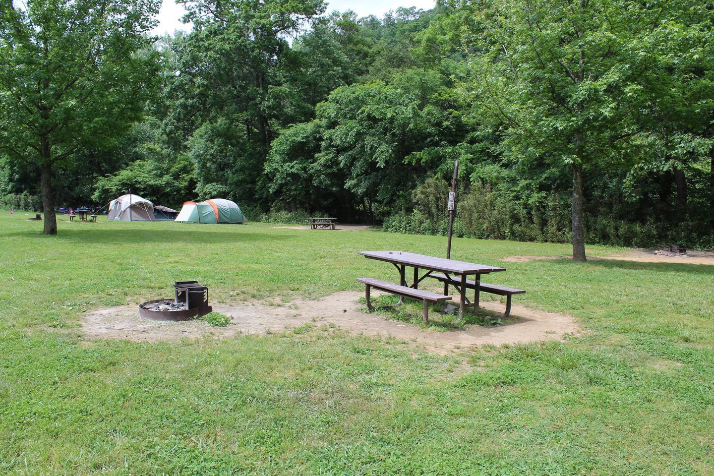 Steel Creek Camp Site #17 (photo 1)Steel Creek Camp Site #17