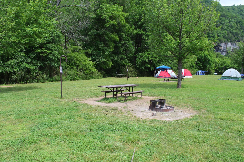 Steel Creek Camp Site #17 (photo 2)Steel Creek Camp Site #17