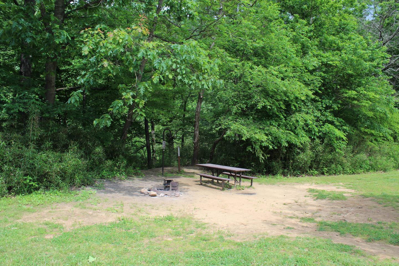 Steel Creek Camp Site #18 (photo 1)Steel Creek Camp Site #18