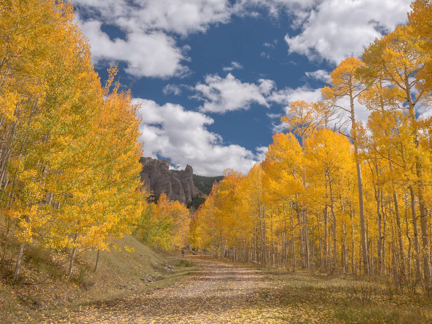 Grand Mesa, Uncompahgre, and Gunnison National Forest