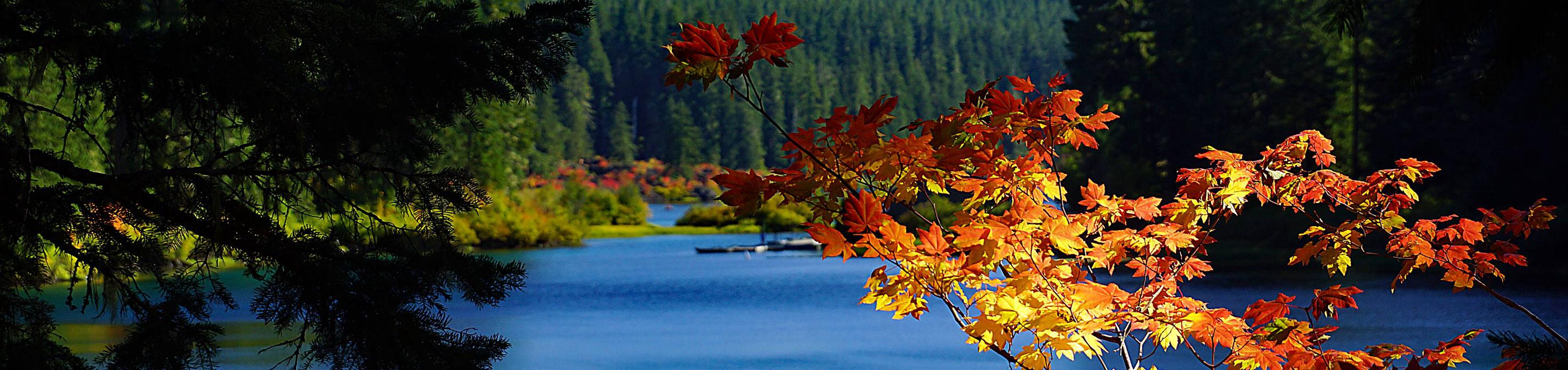 Clear Lake, Willamette National Forest