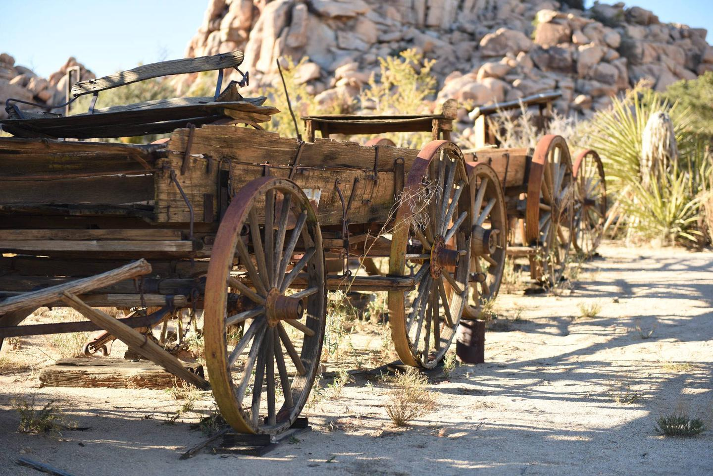 A line of old wooden wagons on the grounds of the ranch.How would you survive out in the desert, isolated from your favorite stores and restaurants?