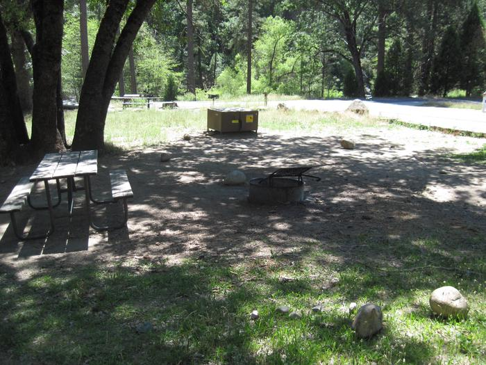 Food locker, picnic table, and fire ringSite 8