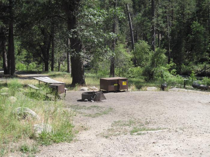 Food locker, picnic table, and fire ringSite 9