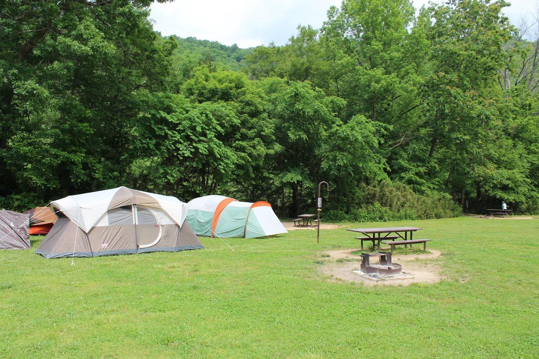 Steel Creek Camp Site #20 (photo 2)Steel Creek Camp Site #20