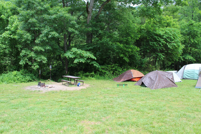Steel Creek Camp Site #21 (photo 1)Steel Creek Camp Site #21