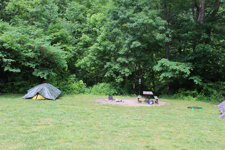 Steel Creek Camp Site #21 (photo 2)Steel Creek Camp Site #21