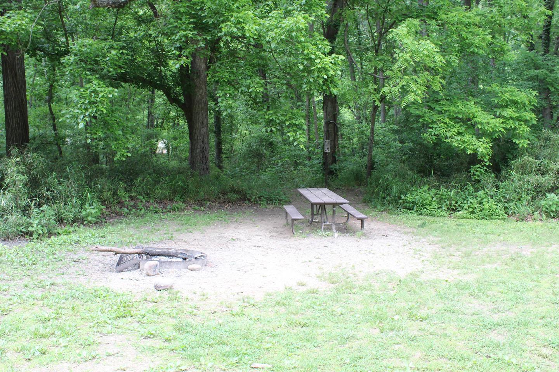 Steel Creek Camp Site #25 (photo 1)Steel Creek Camp Site #25