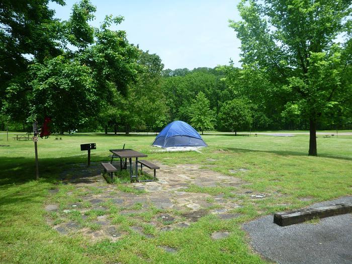 Tyler Bend Main Loop Site 25-2Site #25, 67' back-in, tent pad 15' x 15'.