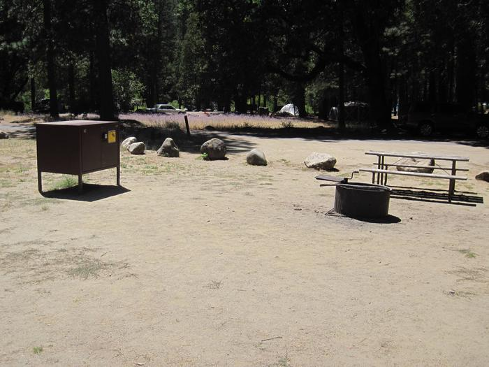 Food locker, picnic table, and fire ringSite 67