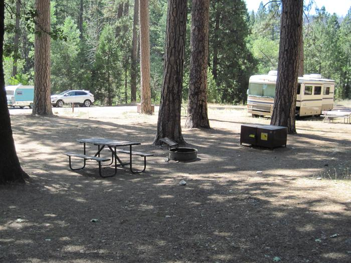 Food locker, picnic table, and fire ringSite 21