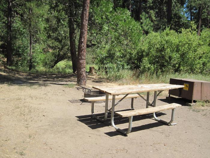 Food locker, picnic table, and fire ringSite 28