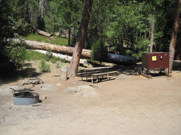 Food locker, picnic table, and fire ringSite 92