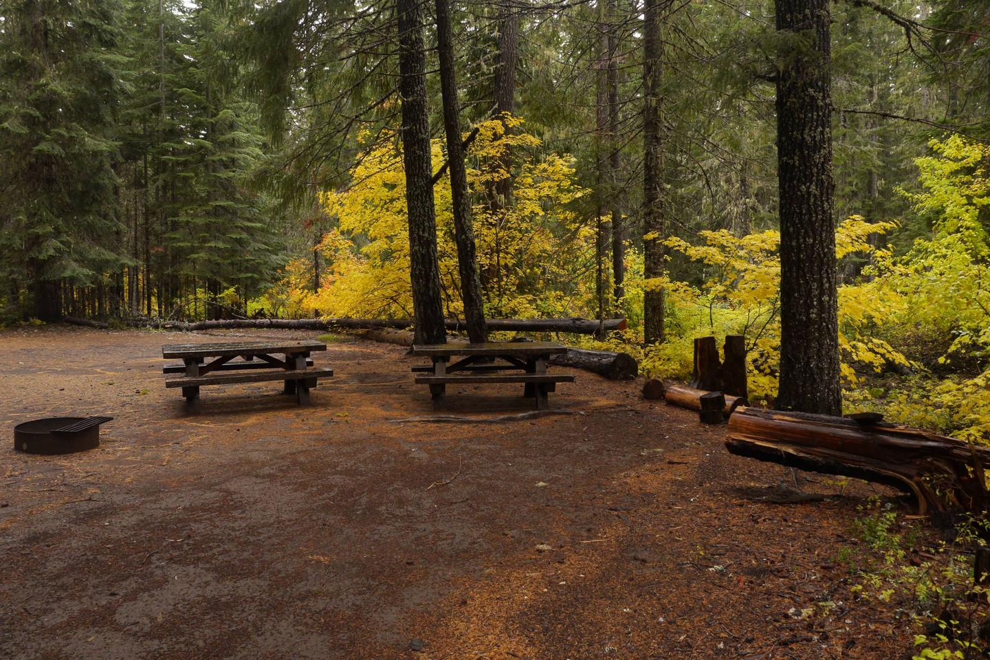 Peterson Prairie Campground in fall