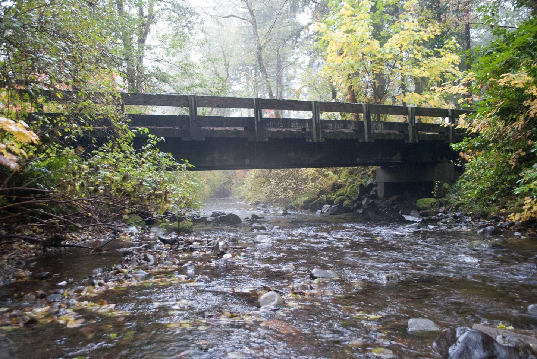 Big Creek trail bridge