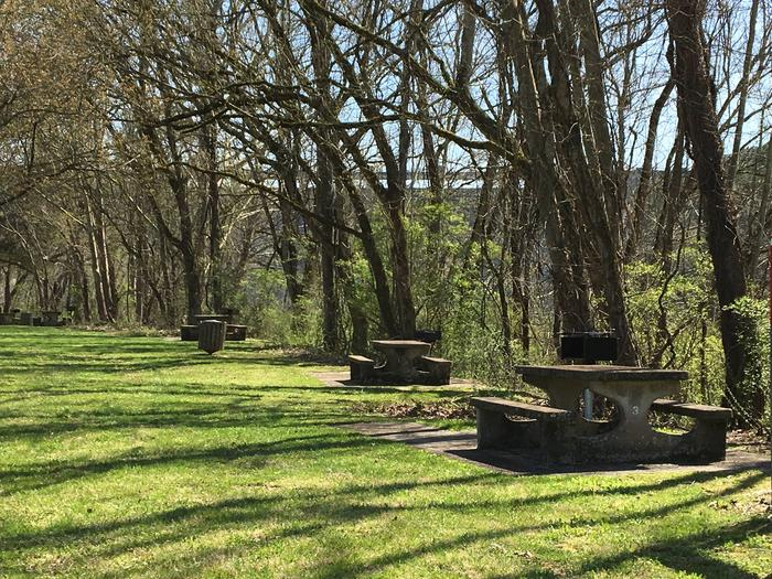 DALE HOLLOW DAMSITE GROUP SHELTER L1 DAY USEDALE HOLLOW DAMSITE DAY USE AREA, RIVERSIDE PICNIC TABLES, NON-RESERVABLE