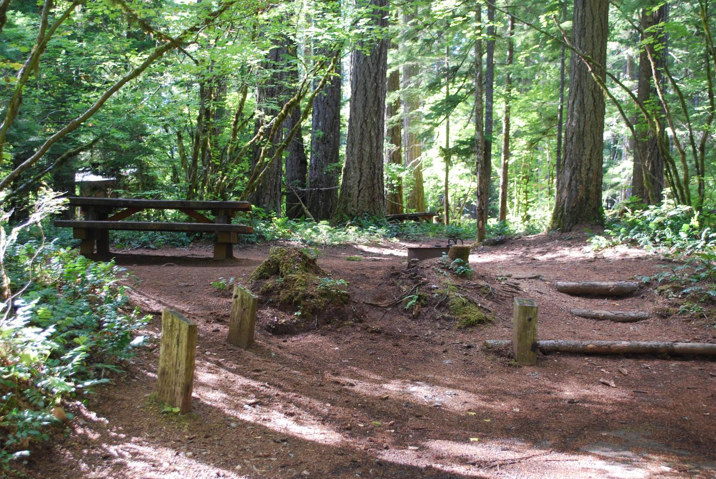 Moss Creek Campsite