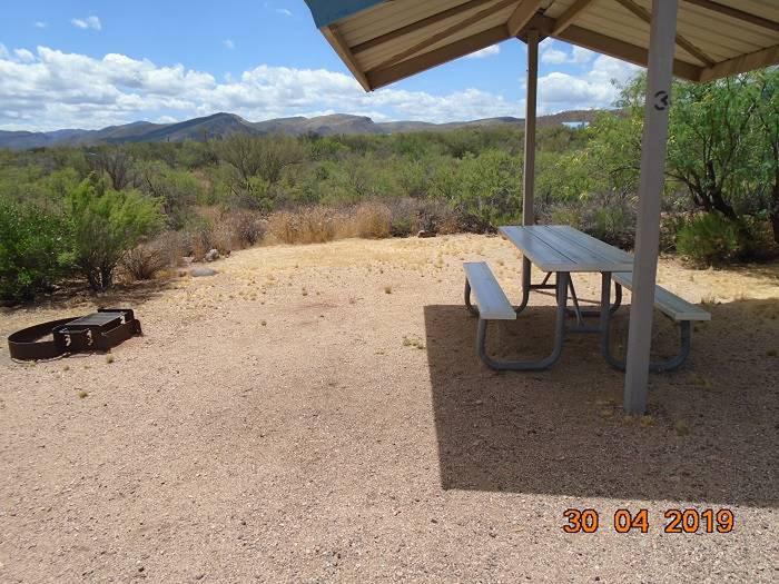 Close-up of Campsite 3Campsite 3, Cholla Campground